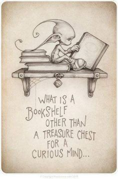 What is a bookshelf other than a treasure chest for a curious mind.