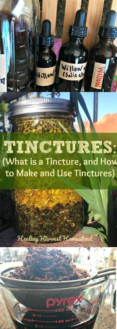 Tinctures: What is a tincture? Can you make your own tinctures? How do you use tinctures? I'm asked these questions all the time. Even though herbal tinctures are becoming more mainstream, they are still not well-known. Find out about tinctures, and learn Healing Herbs, Medicinal Herbs, Natural Healing, Natural Life, Natural Living, Natural Beauty, Holistic Healing, Herbal Tinctures, Herbalism
