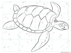 Drawing Techniques How to draw a sea turtle step by step. Drawing tutorials for kids and beginners. Drawing Journal, Drawing Lessons, Drawing Techniques, Art Lessons, Drawing Tutorials For Kids, Drawing For Kids, Turtle Sketch, Draw A Turtle, Easy Turtle Drawing