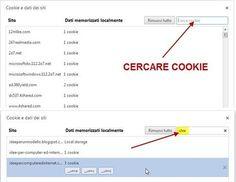 L'eliminazione di tutti i cookie del browser è una operazione molto semplice.