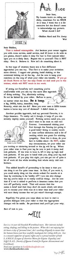 How horses get out of doing work! Funny column from Icee the horse.
