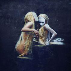 My Wicked Fairy Tale