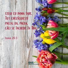 Gândul de dimineață - Editura Viață și Sănătate Minimalist Interior, Floral Wreath, Plants, Decor, Flower Crowns, Flora, Decorating, Dekoration, Deco