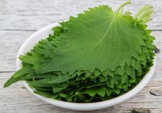 Shiso leaf is a Japanese herb that tastes spicy, minty, and similar to cilantro. It's traditionally a garnish for sushi, but there are other, creative ways to put this perennial plant to use! Shiso Recipe, Dairy Free Salads, La Constipation, Beef Steak, Salad Bar, Woks, Plant Based Diet, Food Hacks, Food Tips