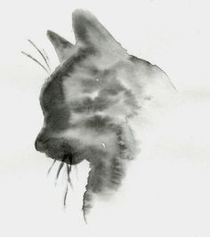 Varietats: Whiskered Paintings