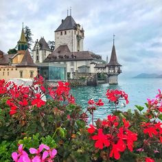 Oberhofen - Switzerland with ✨@epicphototrips✨.