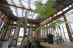 木の温もりを生かした手作りの温室 の画像