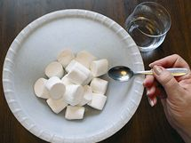 Pěnové bonbóny nasypte do vhodné misky a lehce je pokropte vodou (1 lžička) nebo citrónovou šťávou. Marshmallows, Feta, Fondant, Dairy, Cheese, Recipes, Mascarpone, Marshmallow, Recipies
