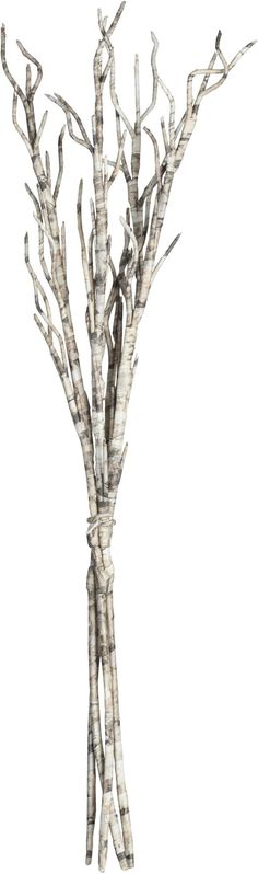 These stylized twig branches bring the outdoors inside. The black and white colour scheme is complemented nicely by the colourful Fall pallette. Display in an extra tall vase.