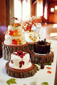 Cute idea to put the cake on a piece of sawed off log