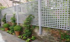 This lattice screen adds height to an existing wall and some privacy, but it could add much more with plants growing up it, planted in front of it, or hanging from it in planters.