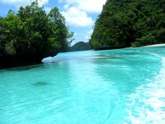 setting, water, ocean, beach, trees, summer, sand, blue water