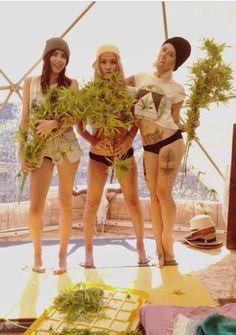Girls n Ganja! #stonergirl