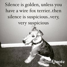 Silence isn't good....... Unless they are asleep.