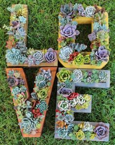 Instead of only displaying your plants or succulents on a wall, display them with character! You can order pre-made planter letters like these, thanks to Etsy retailer Succulent Wonderland.