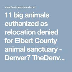 11 big animals euthanized as relocation denied for Elbert County animal sanctuary - Denver7 TheDenverChannel.com