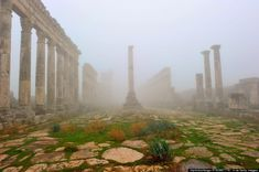 The Apamea ruins were built in Syria's Orontes Valley under the direction of Alexander the Great. Beautiful World, Beautiful Places, Memories Faded, Alexander The Great, Ancient Civilizations, Natural Wonders, Art And Architecture, Bella, Adventure Travel