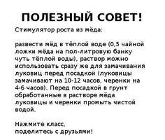 (100) Gallery.ru / Фото #1 - Полезные советы - Engelis