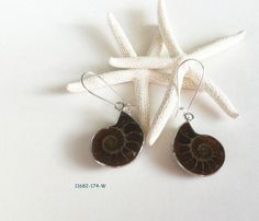 Fossil Earrings, Ammonite, Natural Nautical Jewellery, Chocolate Brown, Unique Ear Glam by FunkyMaMaJewelry on Etsy