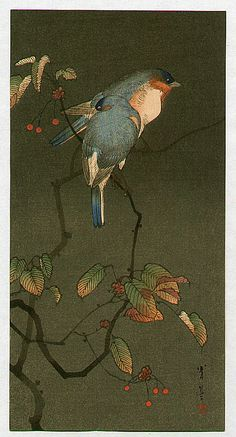 "windypoplarsroom: Shotei Watanabe ""Blue Birds"""
