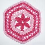 Crochet a Granny-Style Hexagon Motif with a Flower: A Crocheted Granny Hexagon With A Flower in the Center