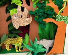 Step 8 Rainforest Habitat Diorama