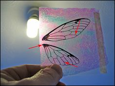 Make your own Fairy wings.