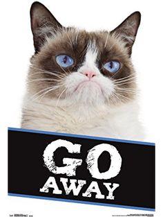 """Trends International RP14303 Grumpy Cat Go Away Wall Poster, 22"""" x 34"""" ❤ Trends International"""
