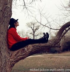 "Michael's ""Giving Tree"". He wrote heal the world in that tree as well as other songs ♥"