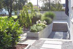 Hage uten plen #hagedesign #terrasse #uterom #grønt #uteromhagedesign…