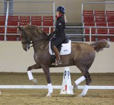 Bring on the Brilliance: Charlotte Dujardin Symposium | Expert how-to for English Riders