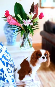 Uppity at Home: Lily and Ginger bouquet