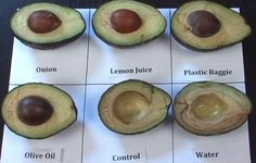 Don't you hate it when unused avocados go brown? Not only does the oxidation turn it an unappetizing color, it can be wasteful because you usually end up scraping off much of the edible part just to remove the brown color. But here's a great tip to prevent browning that I would never have guessed. […]