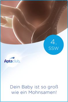 4. SSW: Obwohl dein Baby so winzig wie ein Mohnsamen ist, bekommt es jetzt schon wichtige Nährstoffe geliefert. Erfahre mehr über diese Phase der Schwangerschaft. Baby, Positivity, Kids And Parenting, Pregnancy Weeks, High School Graduation, Newborns, Infant, Baby Baby, Doll