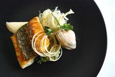 fish, fennel, clams