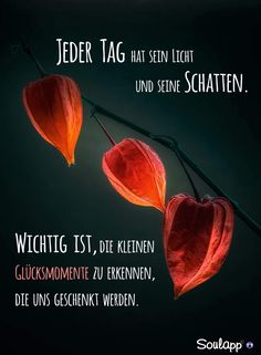 Sometimes a board … – Proverbs – # Proverbs – Good Texts – Sometimes a board sayings Positive Quotes, Motivational Quotes, German Words, Character Quotes, Work Motivation, Good Thoughts, True Words, Picture Quotes, Quotations