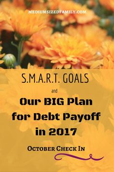 Setting monthly goals is important when you're paying down debt. Peek at the steps we're taking each month to get closer to freedom from debt. Debt Repayment, Debt Payoff, Budget Help, Paying Off Credit Cards, Student Loan Debt, Saving For Retirement, Get Out Of Debt, Money Matters, Money Management