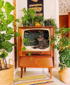 Repurposed old TV used as a cat chillatorium (by Keltainen kahvipannu) : aww Flea Market Decorating, Diy Casa, Deco Originale, Cat Room, Cat Furniture, Barbie Furniture, Furniture Design, Home And Deco, Old Tv