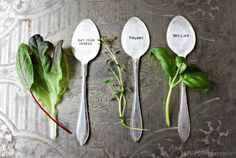 Suklaamarenki-blogissa Belovedin yrttimerkkareita arvottavana! Eat, Tableware, Crafts, Collections, Dinnerware, Manualidades, Dishes, Handmade Crafts, Diy Crafts