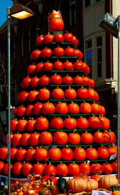 Circleville Pumpkin Show 10-22-2011 p by JoyiaElenaSibley, via Flickr