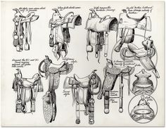 'Saddles' - Collection of illustrations from Jo Mora's Californios.