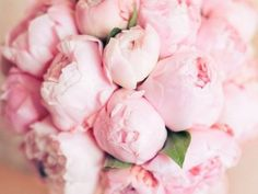 the most romantic flowers
