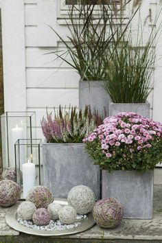 Front door flower pots are the perfect way to show your love of plants if you have little or no yard for a garden. See the best ideas and designs. Big Planters, Outdoor Planters, Square Planters, Concrete Planters, Grey Gardens House, Terrazas Chill Out, Front Door Plants, Summer Porch Decor, Alpine Plants