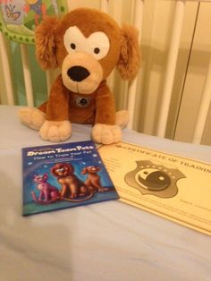 Dream Team Pets Playful Puppy Review & Giveaway! End the bedtime battles and make this Puppy part of your child's nightly routine.