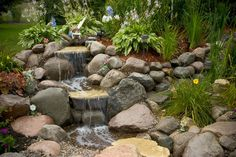 http://www.aquascapedesigns.com/index.php/water-garden-portfolio/showcaseprojects/87-sugar-grove