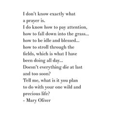 Mary Oliver quote from One Summer Day poem. Tell me, what is it you plan to do with your one wild and precious life?