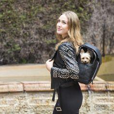 Kamily es la mochila perfecta cuando buscas comodidad sin renunciar al diseño y a la buena compañía de tu mascota Westie Puppies, Pomeranian Puppy, Yorkie Terrier, Tallest Dog, Dog Bag, Dog Carrier, Dog Hoodie, Pet Carriers, Dog Boarding