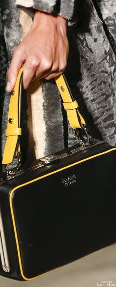 d0108c55ae Prada Spring 2016 RTW Fab Bag