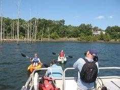Kayaking in Manasquan Reservoir is one of the activities