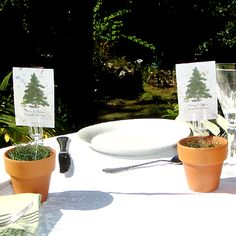 "Evergreen seed favors in terra cotta pots are a eco-chic favor for ""rustic"" weddings."